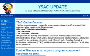 YSAC Update newsletter2013-1